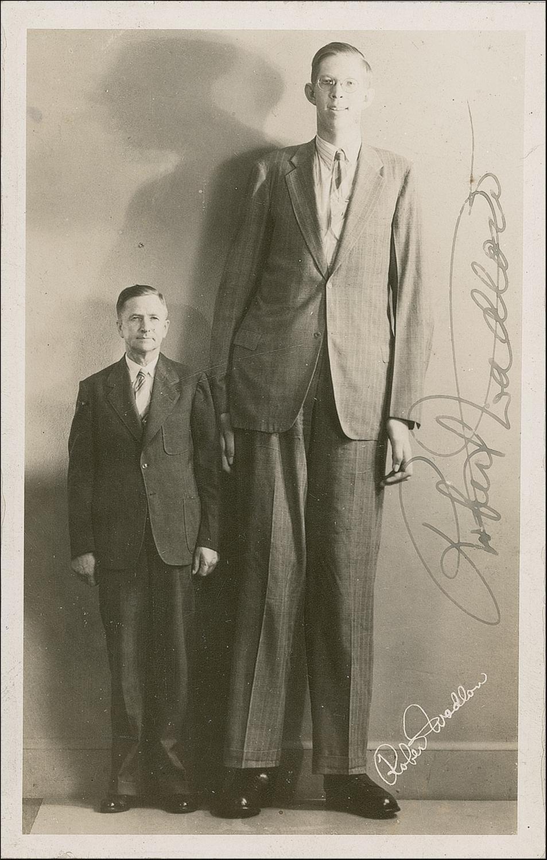 de langste man ooit - robert madlow